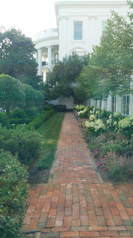 Garden looking at White House
